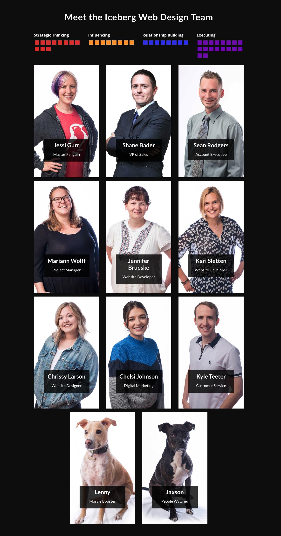 Iceberg Team Page