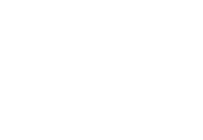 icon - website code